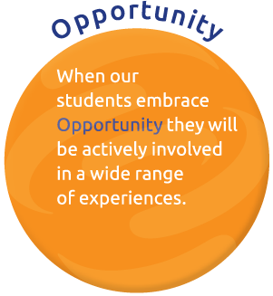 WPS-2015-17-Opportunity.png