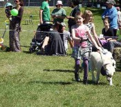 Pet Parade Pet Day 2015 23 opt